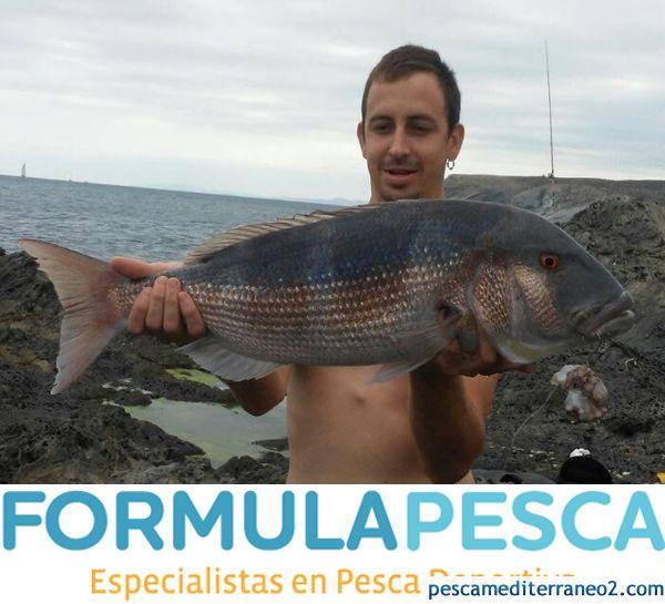 Dentón de 5 Kilos Pesca Costa Brava
