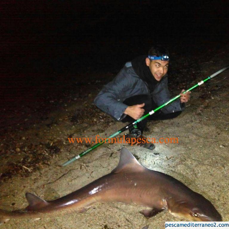 Pescan un Tiburón en Almería