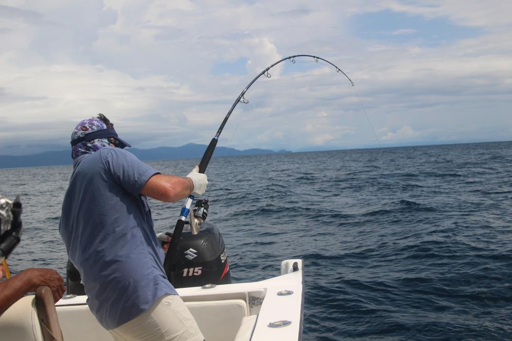 Colombia BD peleando un pez.JPG