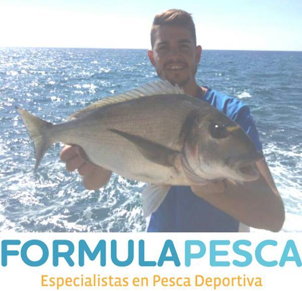 Dorada 2.150 Kg. pesca en roca