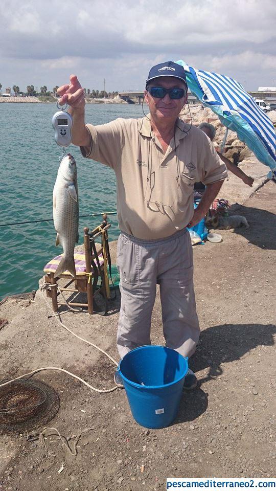 mi colega de pesca
