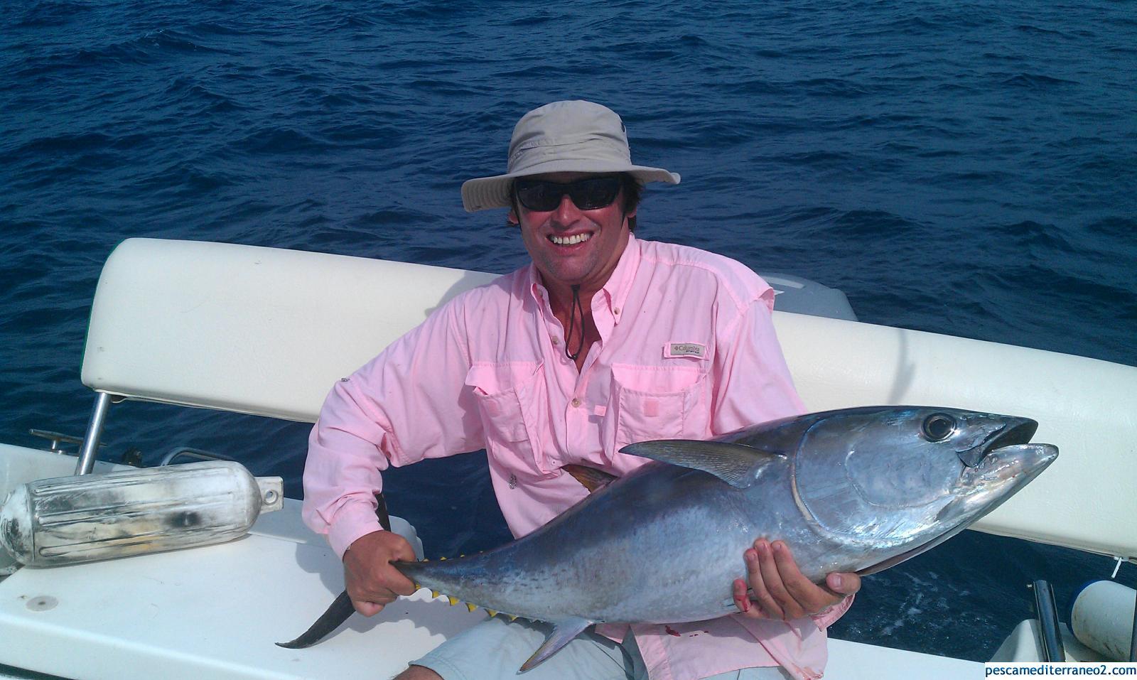 70 lb Bluefin Tuna