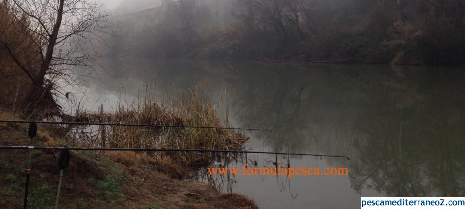 pesca carpfishing En invier