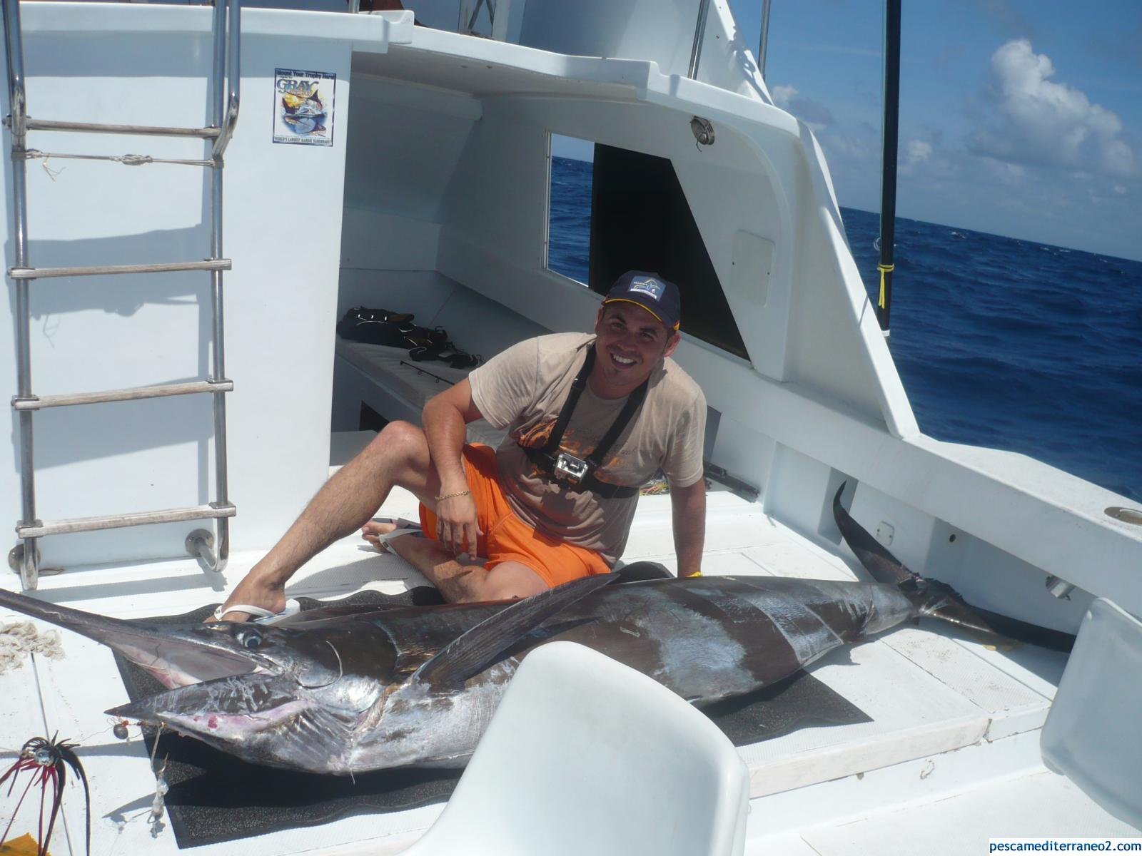 Marlin azul 120 Kg
