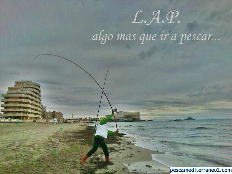 Anuncio LAPa