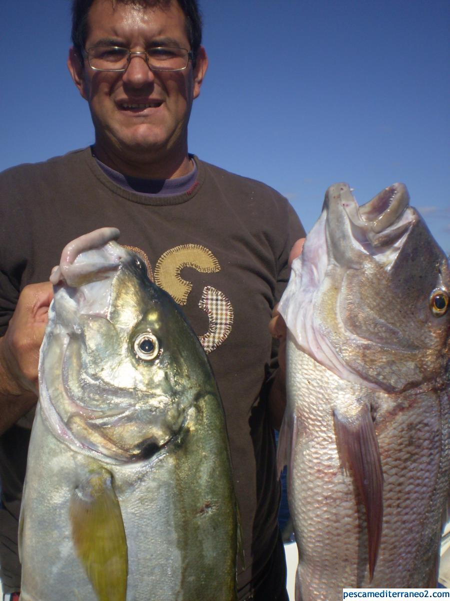 lanzarote fishing team