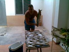 pesquerita