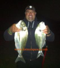 Pesca dorada Costa Brava