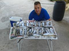 magres pescados en torregarcia